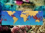 where coral reefs are located