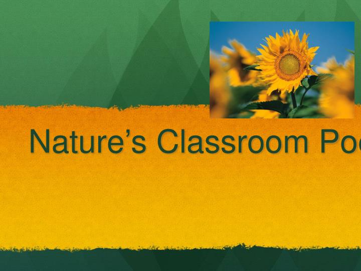 nature s classroom poetry unit n.