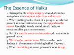 the essence of haiku