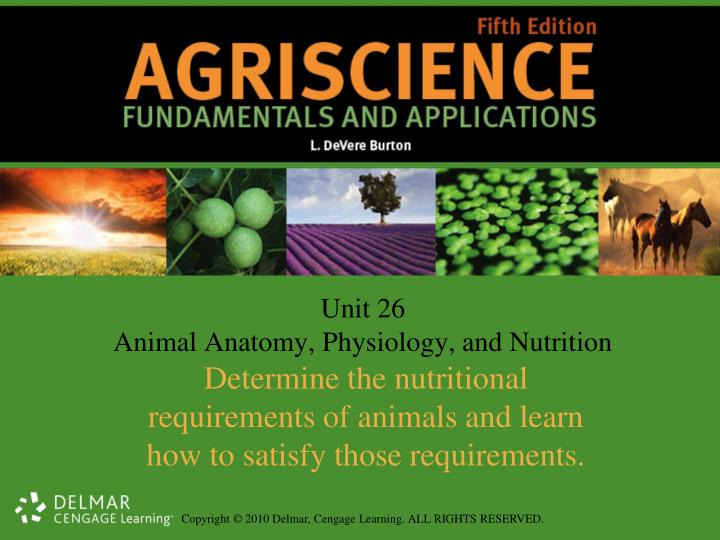 PPT - Unit 26 Animal Anatomy, Physiology, and Nutrition PowerPoint ...