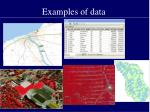 examples of data