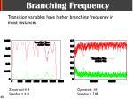 branching frequency1