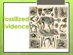 fossilized evidence