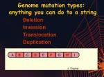 genome mutation types anything you can do to a string