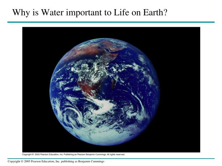 why is water important to l ife on earth n.