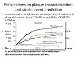 perspectives on plaque characterization and stroke event prediction