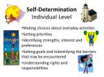 self determination individual level1