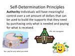 self determination principles2