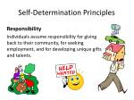 self determination principles6
