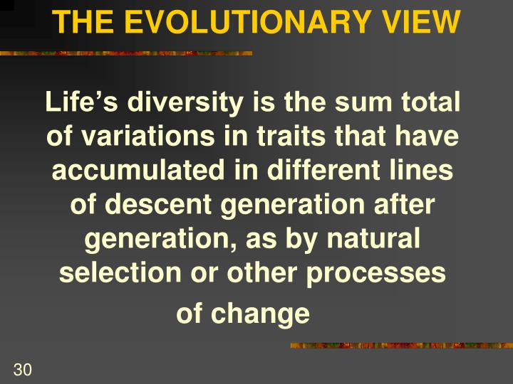 THE EVOLUTIONARY VIEW