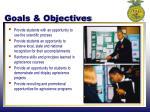 goals objectives1