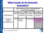 what counts as an economic evaluation
