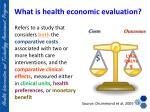what is health economic evaluation