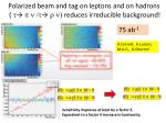 polarized beam and tag on leptons and on hadrons t p n t r n reduces irreducible background