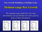fire growth modelling at multiple scales11