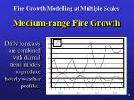 fire growth modelling at multiple scales12