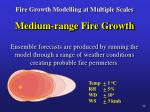 fire growth modelling at multiple scales14