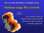 fire growth modelling at multiple scales16