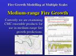 fire growth modelling at multiple scales17