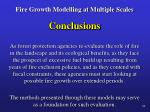 fire growth modelling at multiple scales31