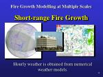 fire growth modelling at multiple scales7