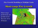 fire growth modelling at multiple scales9