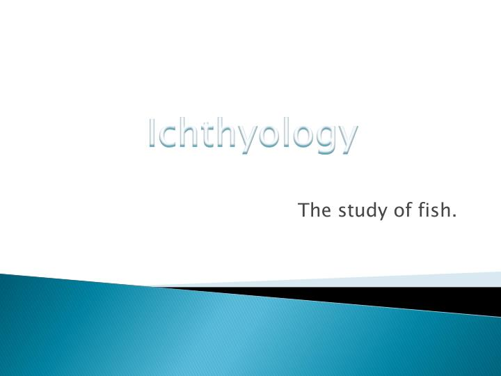 the study of fish n.
