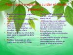 pasos para empezar a cuidar el medio ambiente