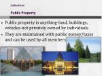 collectivism public property