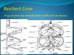 reichert cone2