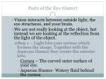 parts of the eye outer