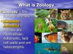 what is zoology