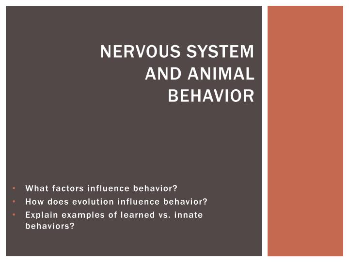 nervous system and animal behavior n.
