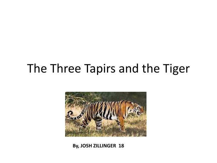 the three tapirs and the tiger n.