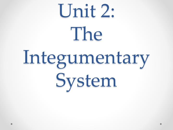 unit 2 the integumentary system n.