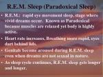 r e m sleep paradoxical sleep1