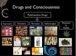 drugs and consciousness3