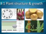 9 1 plant structure growth