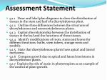 assessment statement