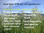 how does it fit our 10 hypothesis1