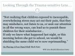 looking through the trauma sensitive lens