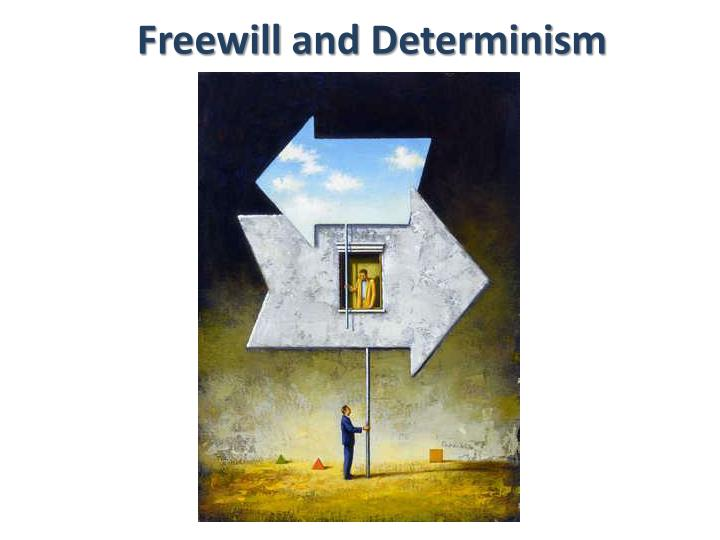 freewill and determinism n.
