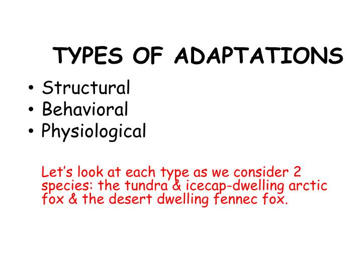 TYPES OF ADAPTATIONS
