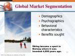 global market segmentation1