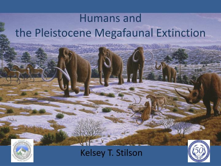 humans and the pleistocene megafaunal extinction n.