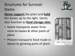 structures for survival stems