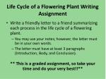 life cycle of a flowering plant writing assignment