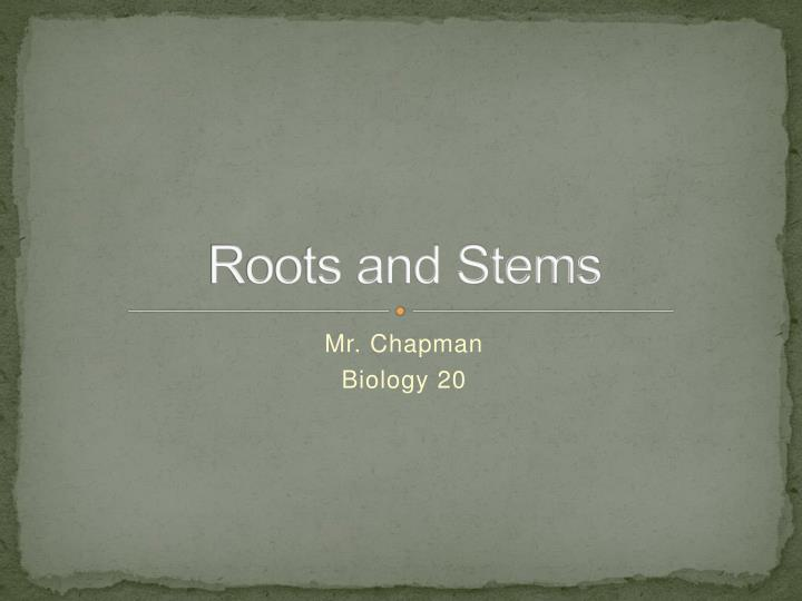 roots and stems n.