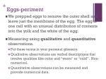eggs periment