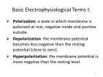 basic electrophysiological terms i2